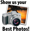 Show us your best photos and let us build you a folio in the Design center